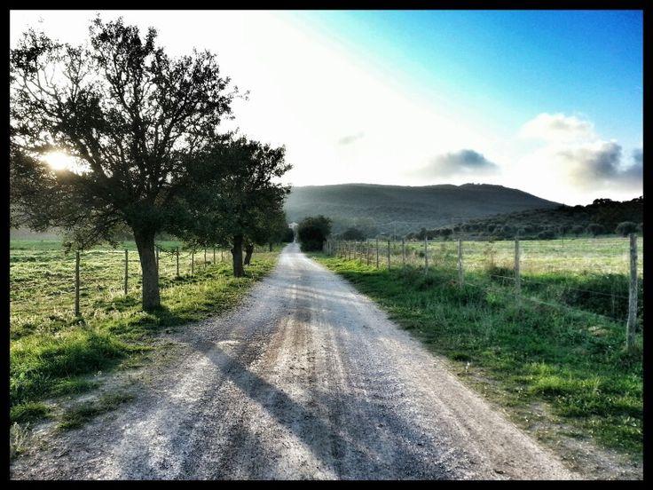 Road to Valentina #agriturismolavalentina