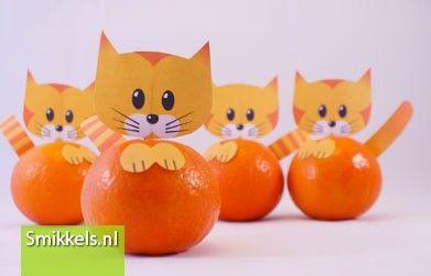 Traktatie mandarijn katjes | Smikkels.nl