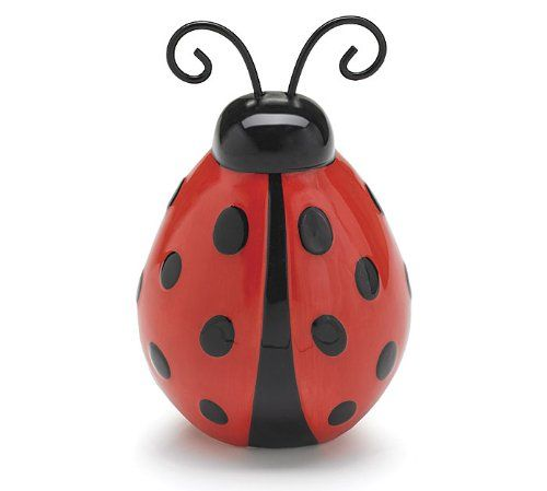 Fruit Cup Ladybugs  Fruit Cup Ladybug A Healthy Valentine Snack For