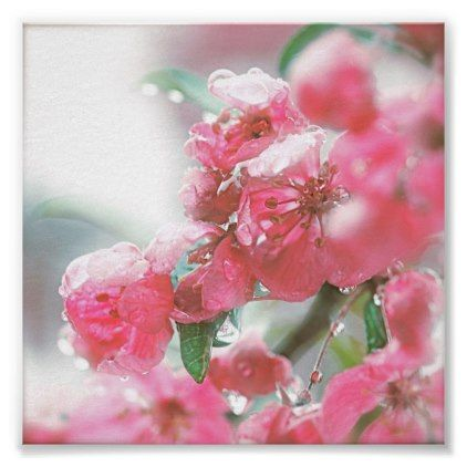 Pink Petals & Ice Flowers Poster - floral style flower flowers stylish diy personalize