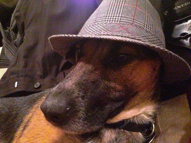 Inspector Dexter.