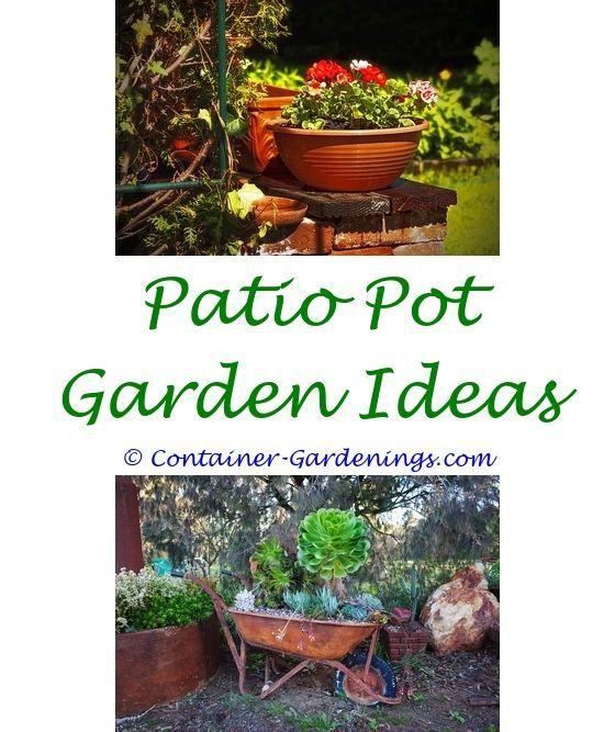 Garden Grow Easy Gardening Tips In Hindi Home Garden Ideas