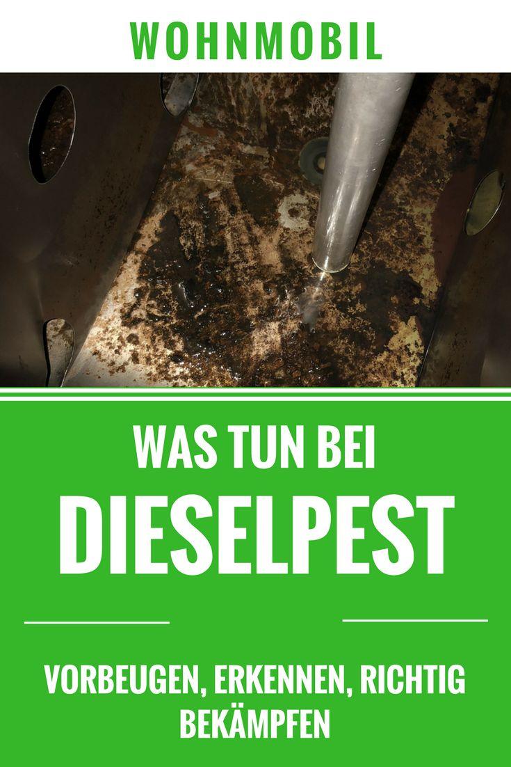 Dieselpest bei Wohnmobil und Camper. Wie Du der Gefahr vorbeugst, die Dieselbakterien im Tank richtig erkennst und beseitigst!
