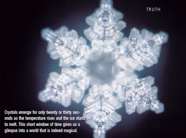 The Hidden Messages of Water - Masaru Emoto explains how  thought effects our water.
