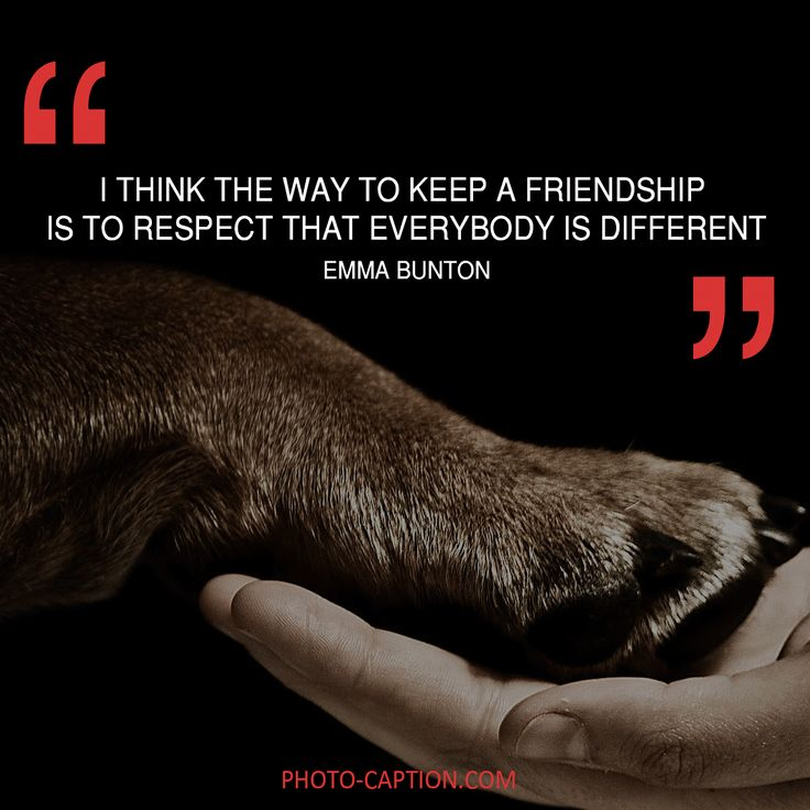 ''I think the way to keep a frienship is to respect that everybody is different.'' Emma Bunton Check out the link in the bio for more best friend captions #friendship #bestfriend #love #BOYFRIEND #happy #friend #best #bestie #quotegram #quoteoftheday #photocaption #quote #quotes #quotegram #quoteoftheday #caption #captions #photocaption #FF #instafollow #l4l #tagforlikes #followback