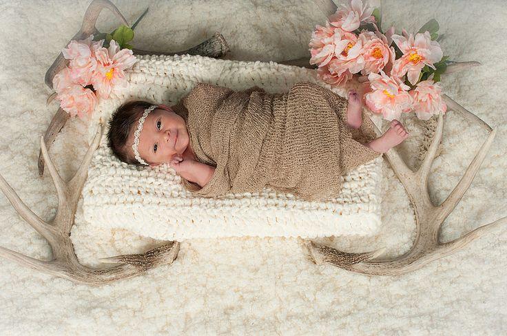 Robinwood Photography: Newborn Baby Girl Portraits ~ Oregon City Portrait Studio / Robinwood Photogrprahy / deer antlers