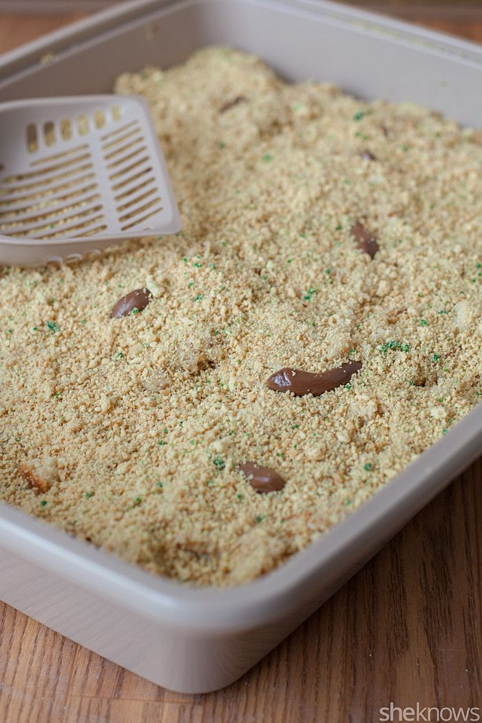 Best  Kitty Litter Cake Ideas On Pinterest Gross Halloween - Kitty litter birthday cake