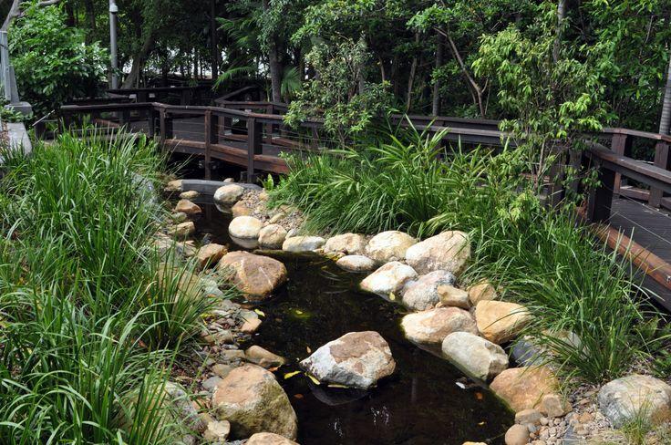 Southbank   My Aussie Photo Album showcases the best of Australian places rainforest walk #southbank #brisbane #4101