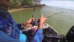 Barramundi lure fishing Cape York - YouTube