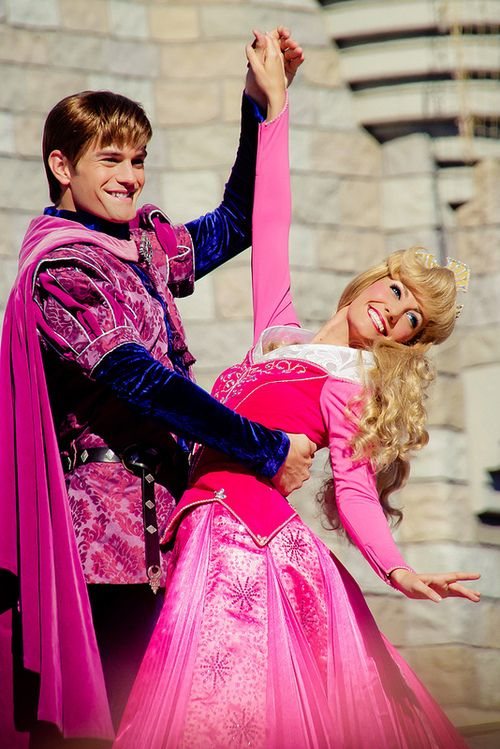 Wordless. Sleeping Beauty. Prince Philip. Aurora. Disney World.
