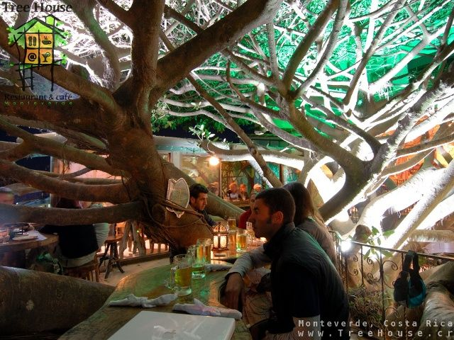 Tree house restaurante and cafe, Monteverde, Costa Rica. So wish I would have known of this restaurant when we went!