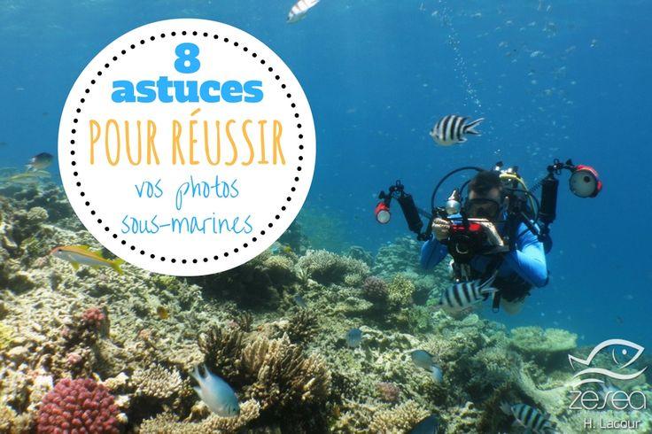 8 astuces pour améliorer et réussir vos photos sous-marines - 8 tips to improve your underwater photographies