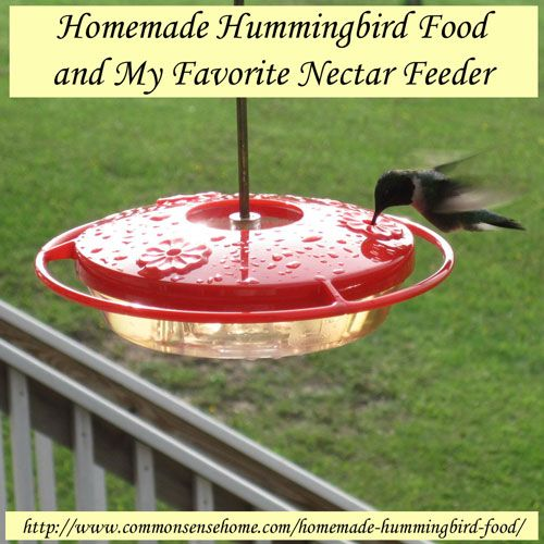 Homemade Hummingbird Food and My Favorite Nectar Feeder @ Common Sense Homesteading