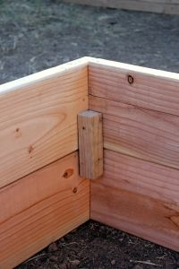 How to Build Raised Garden Boxes