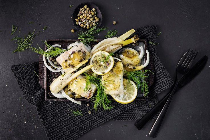 Oppskrift på torsk i form med fennikel, dill og sitronsaus.