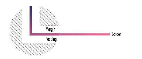 Basic CSS : Margin et padding, qui est qui ?