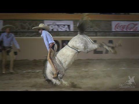 Nacional Charro Jalisco 2014 - Coleadero - YouTube