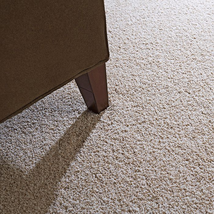 Best Type Of Carpet For High Traffic Areas With Images Types