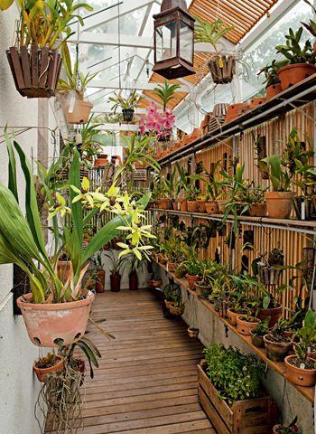 O interior do orquidário projetado por Juliana. Os brises de  madeira foram instalados para diminuir a incidência da luz.  Os vasos estão em ganchos de parede e de teto e em prateleiras