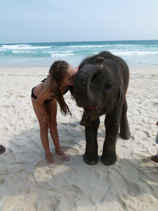 i want to go kiss a baby elephant on a beach somewhere.