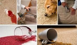 Book our carpet cleaning service and get the best results you are looking for. Call now (1300 362 217) to check out the special deals we have lined up for you. http://squeakycleancarpet.com.au/