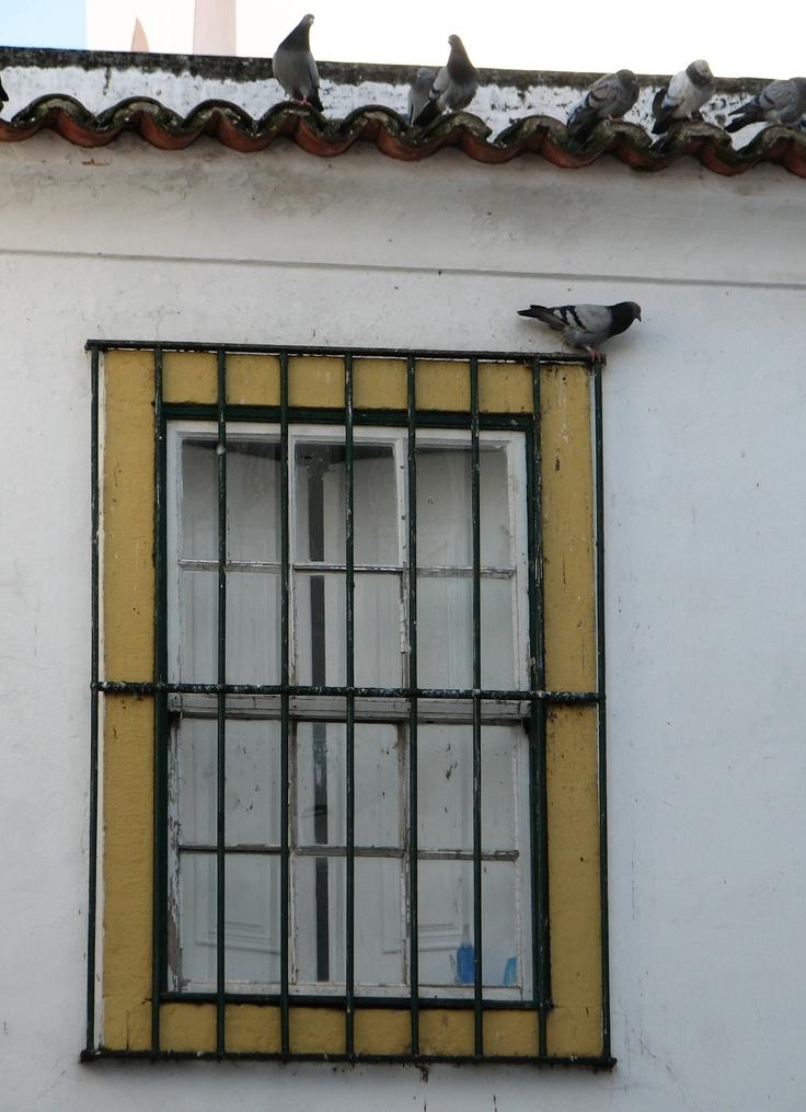 Evora ; Portugal