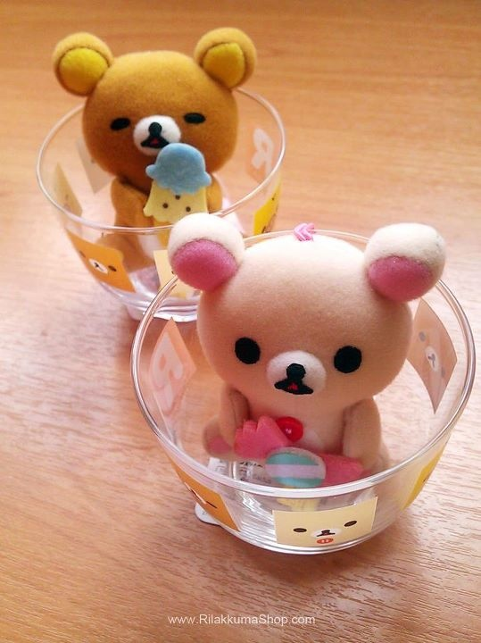 kuma in the cup