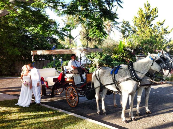 Our Bermuda Wedding Planners Are Here To Cater Your Every Needs