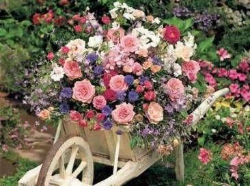 Carretilla llena de flores flores pinterest - Fotos de flores de jardin ...