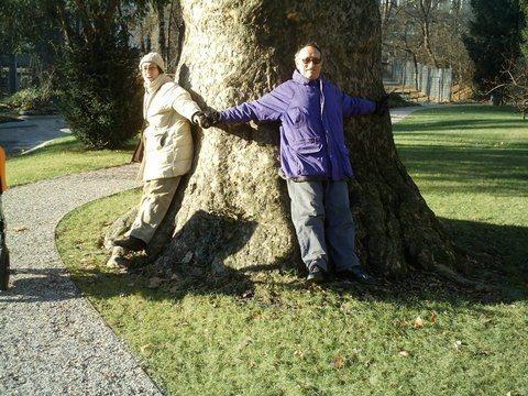 Estábamos rodeando el árbol - elebe, Austria en español