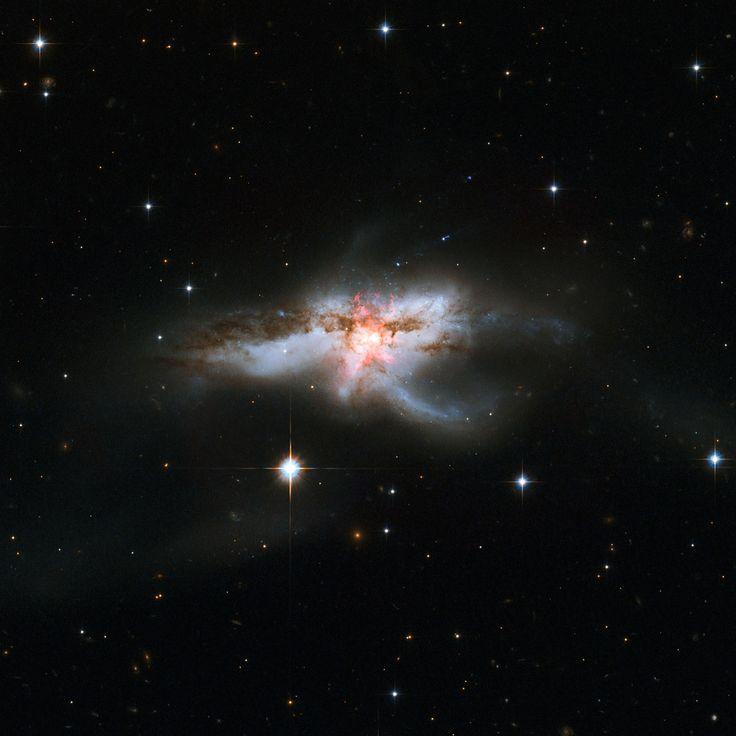 NGC 6240 la galassia disordinata :-)