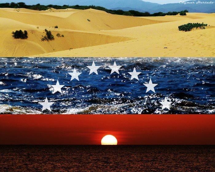 Bandera de paisajes venezolanos