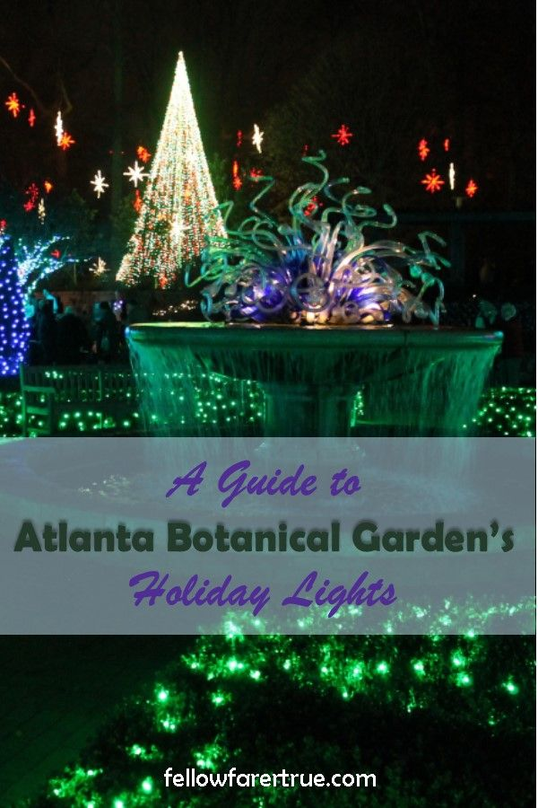 b44222df50a73271ae4ac02d3ae915ff - Savannah Botanical Gardens Christmas Lights 2018
