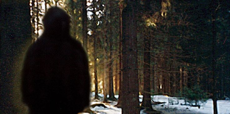 Is #Bigfoot Real? Emerging #Scientific Evidence