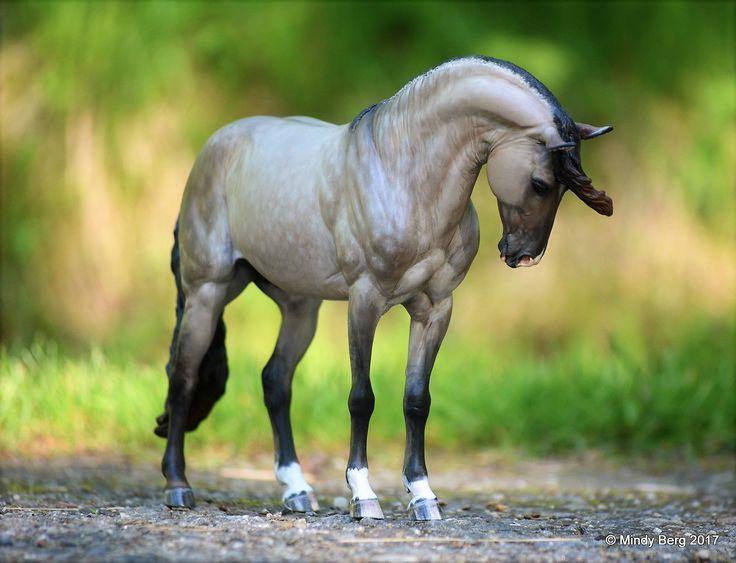 1021 Best Model Horses The Carpet Herd Images On