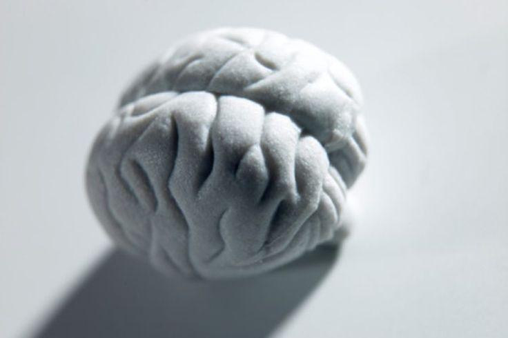 ¿Qué nervios craneales componen el sistema parasimpático? | Muy Fitness