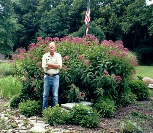Maryland Native Plants: 45 Best Maryland Native Plants