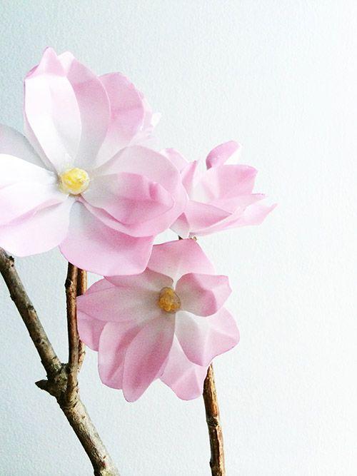 DIY paper magnoliasDiy Ideas, Diy Magnolias, Branches Diy, Paper Magnolias, Diy Flower, Wax Paper Flowers, Papermad Magnolias, Diy Paper, Designsponge