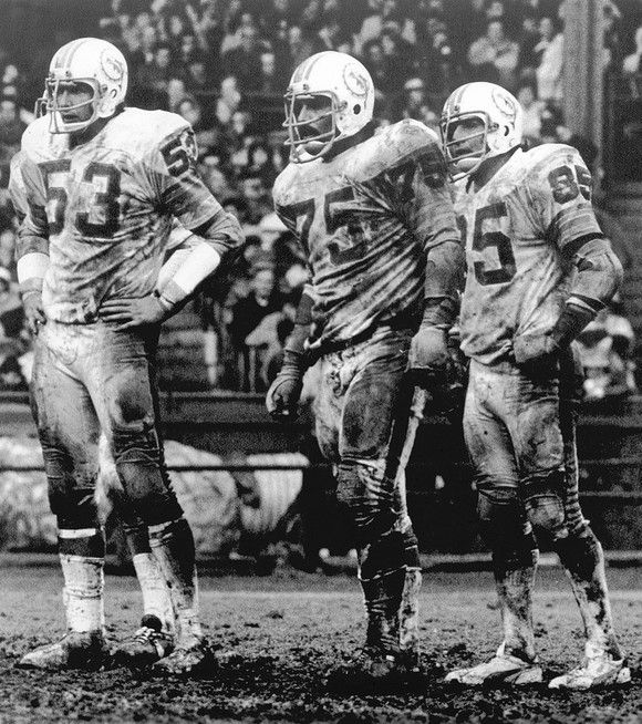"Nick Buoniconti (85), Manny Fernandez (75), and Bob Matheson (53), of the Miami Dolphins - ""No Name Defense."""