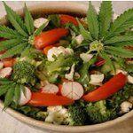 Cannabis News Ⓥ (@OfficialHemp)   Twitter
