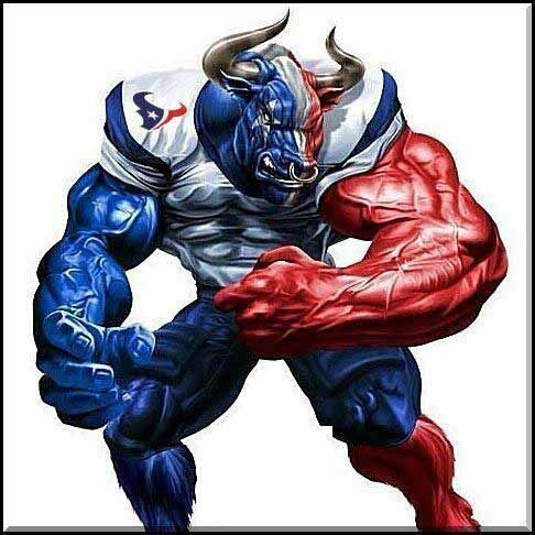 1000 Images About Houston Texans On Pinterest Logos
