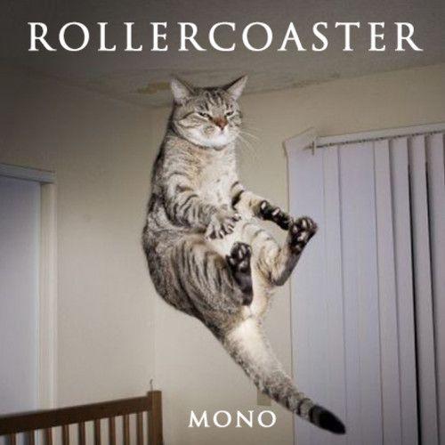 Rollercoaster demo