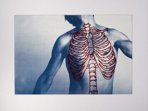 Anatomy embroidered over photographs.