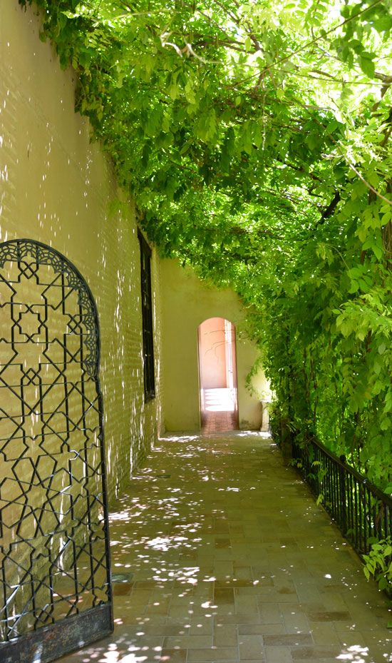 852 best a home garden images on pinterest new books for Shady courtyard garden design