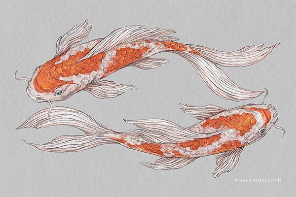 Image by Shutterstock Vintage Hand Drawn Koi Fish Women/'s Tee