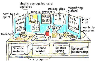 classroom science Centers   science center layout: observation & experiment zone