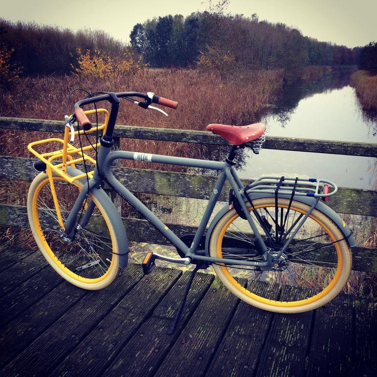 Cycling my BUB Batavus in autumn