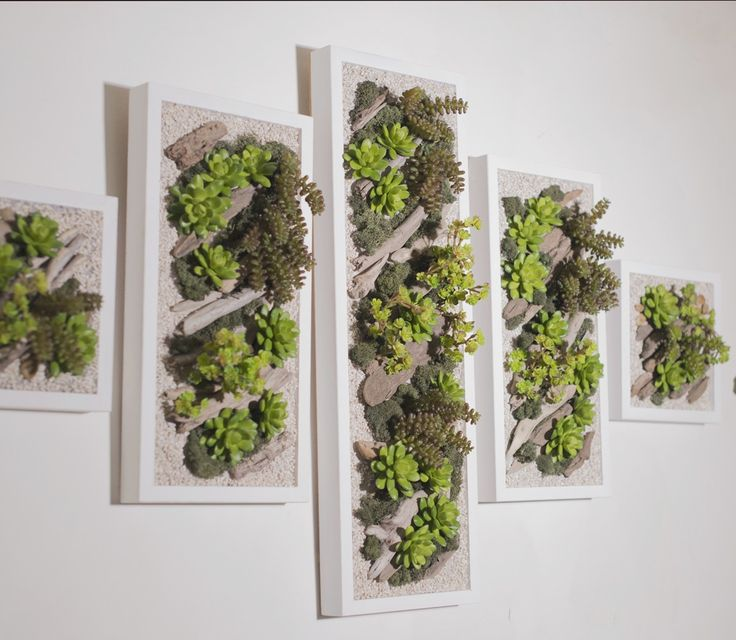 17 best ideas about tableau vegetal on pinterest cadre for Mur vegetal exterieur quelles plantes