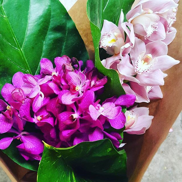 Beautiful tropical orchid bouquet in pinks with green tropical leaf.