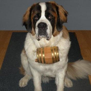 Amazon.com: Saint Bernard Dog Collar Barrel: 1/2 Liter - Brass: Pet Supplies hahahahaahaha